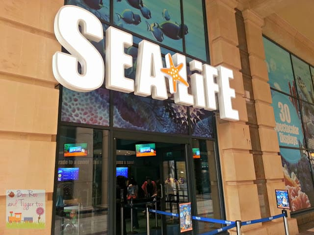 Sea Life Centre Manchester | Boo Roo and Tigger Too