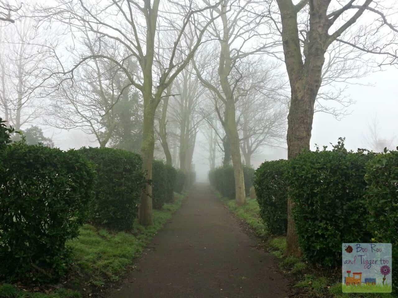 Photo of the week #SilentSunday #MySundayPhoto - Graveyard