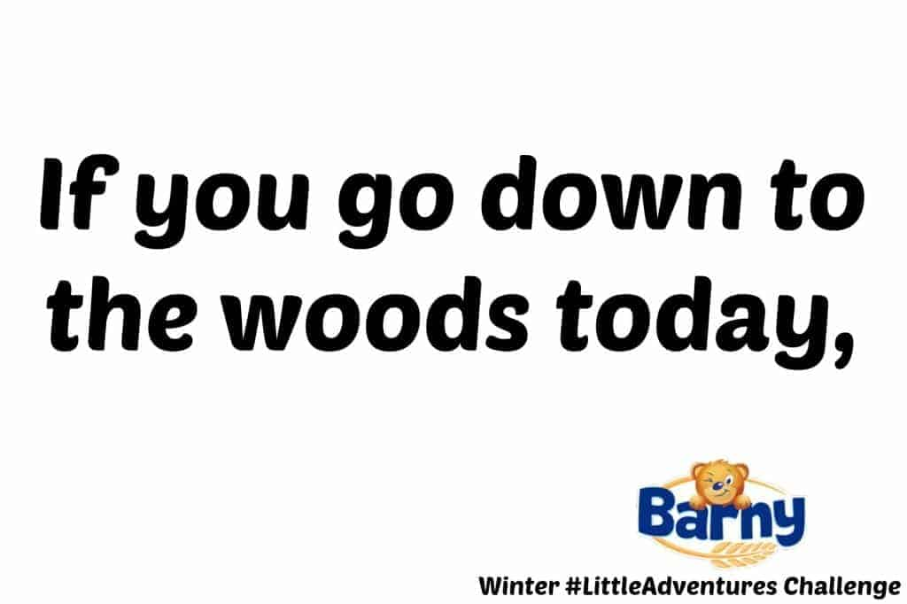 Barny Winter #LittleAdventures Challenge - If you go down to the woods today