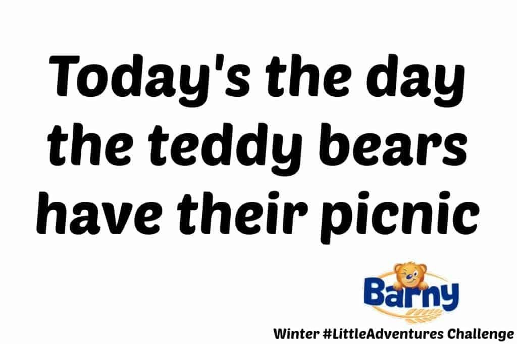 Barny Winter #LittleAdventures Challenge - Today's the day the teddy bears have their picnic