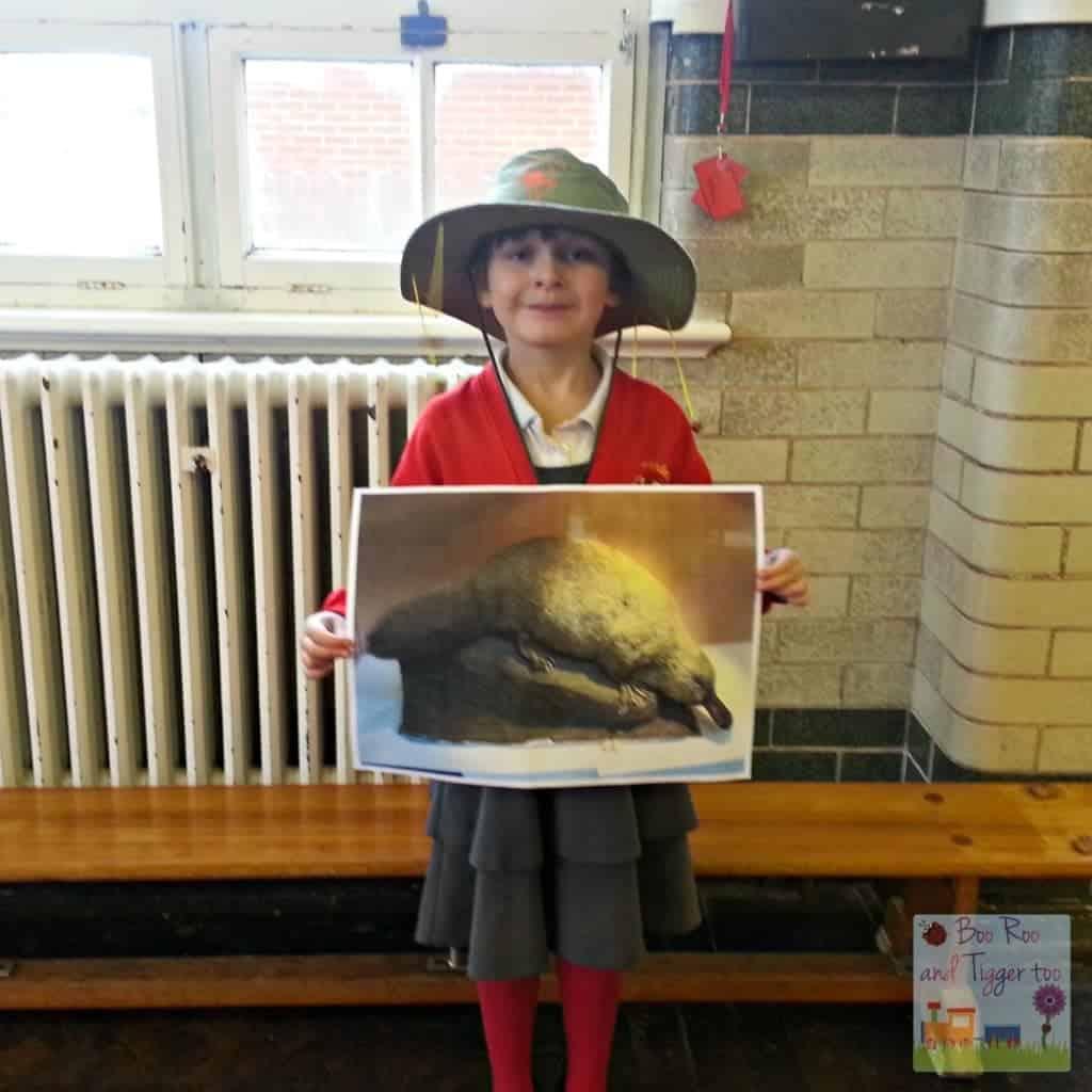 Roo - Australia Assembly Platypus