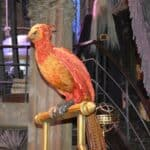 Harry Potter Feathers and Flight - Fawkes