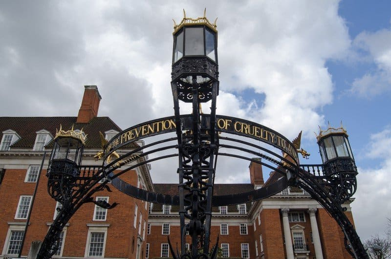 rspca-monument-richmond-thames-ornate-victorian-structure-celebrating-royal-society-prevention-cruelty-to-image33957608