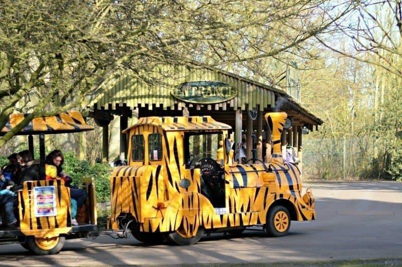 Banham Zoo - Train