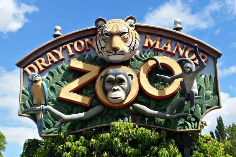 Drayton Manor Zoo on car kitchen