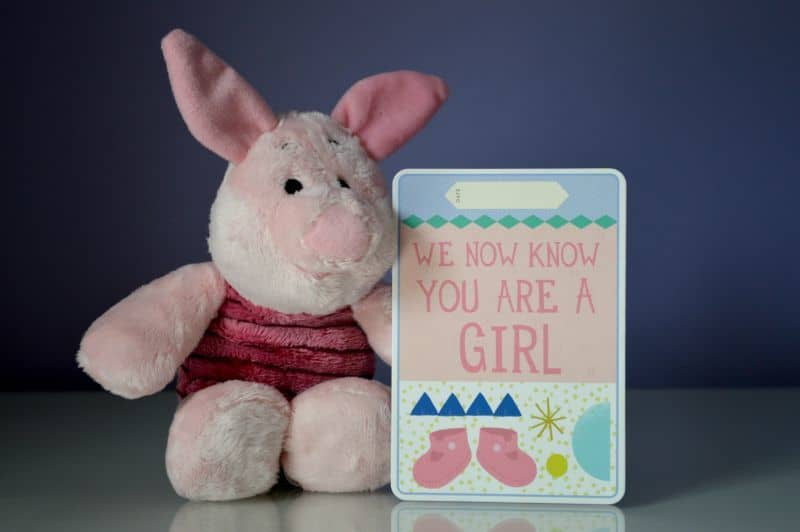 Piglet Pregnancy - It's a girl