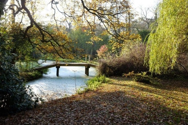 Fairhaven Woodland and Water Garden, Norwich