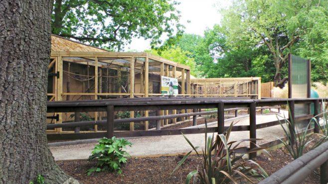 Tamarin Trail at Drayton Manor - Walkways