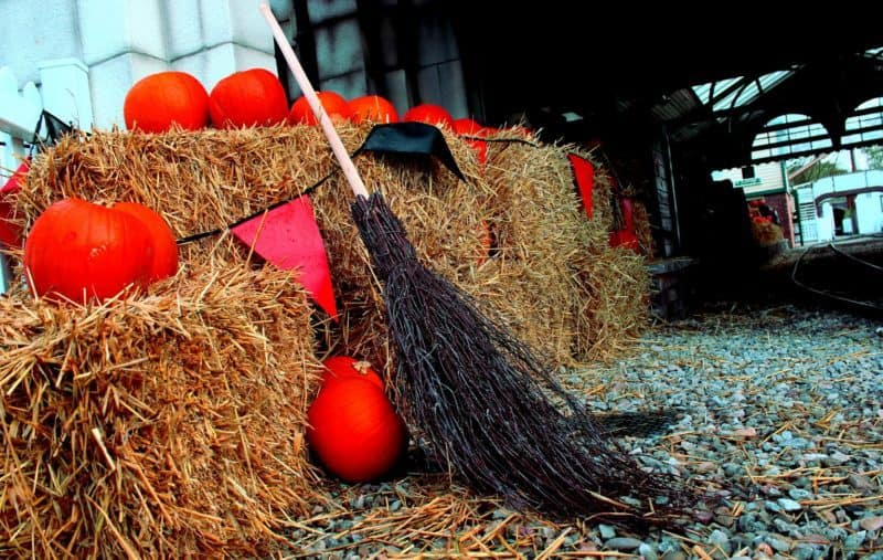 Drayton Manor Park Halloween Broom