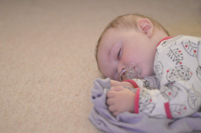 Sleeping Piglet - 8 months