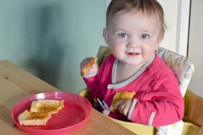 baby-at-the-table-piglet-eating-toast