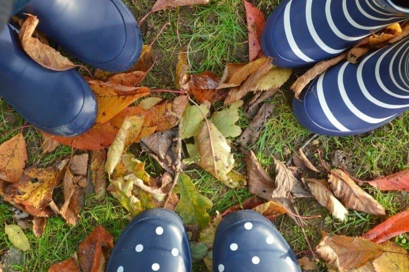 Enjoying Autumn #WellyWalks