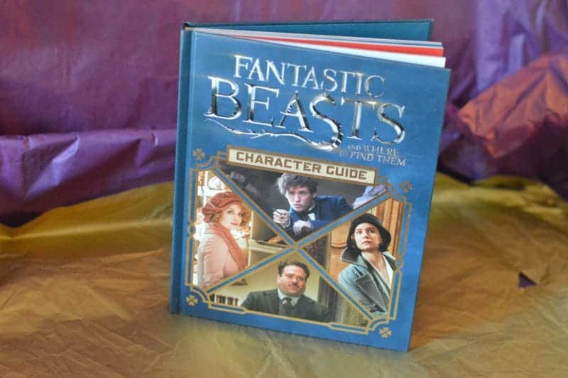 Fantastic Beasts Gifts and Where To Find Them