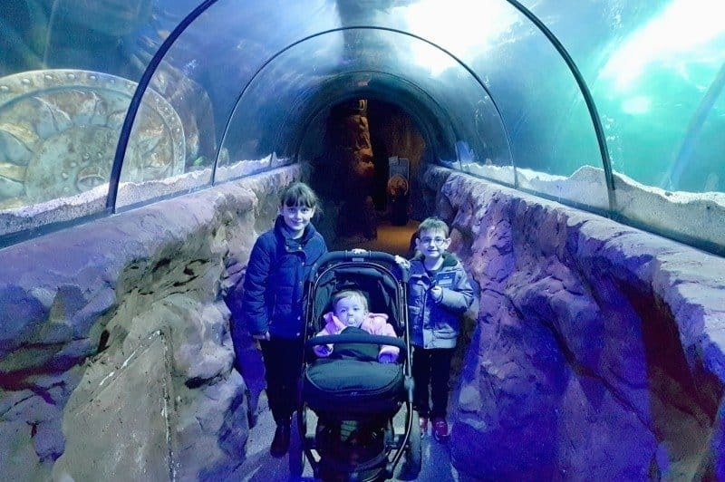 A Postcard From… SEALIFE Centre Great Yarmouth