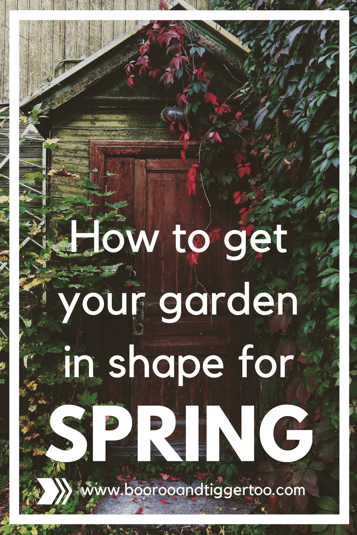 How to get your garden in shape for spring