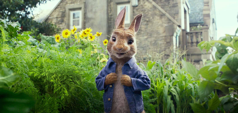 Peter Rabbit and Mr McGregor's vegetable garden!