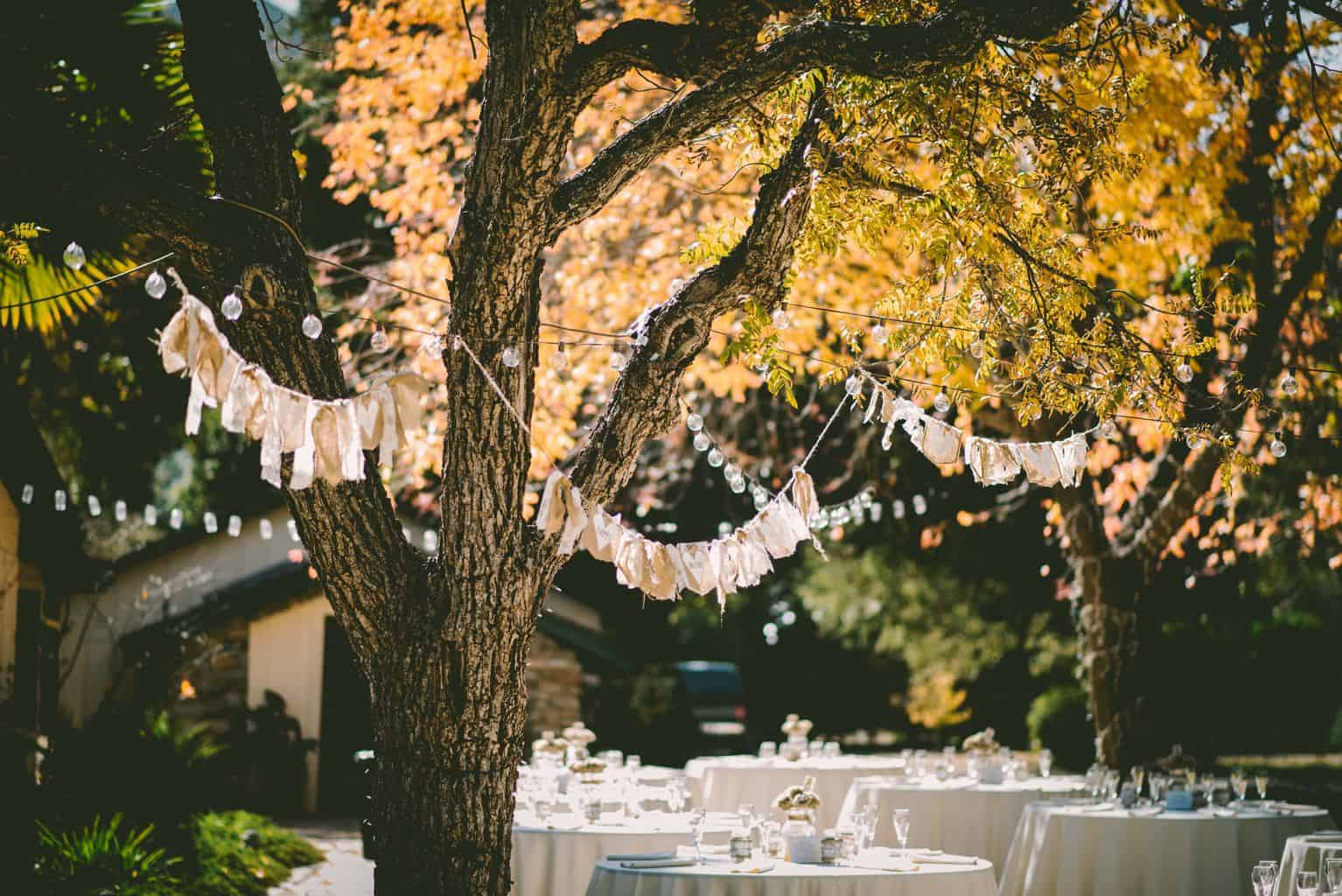 How to Plan an Elegant Wedding on a Budget