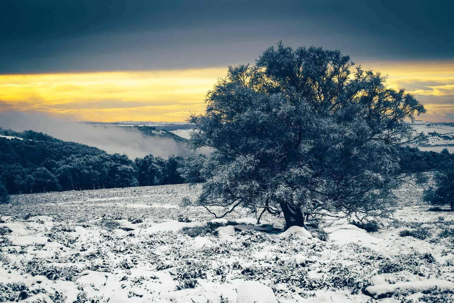 3 Unusual Locations That Guarantee Snow
