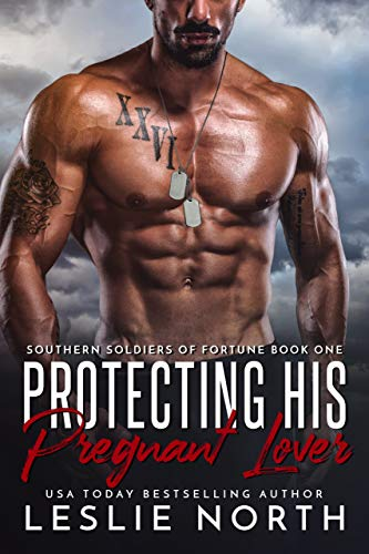 Southern Soldiers of Fortune book 1