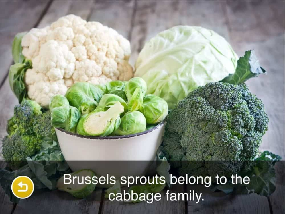 vegetables - Brussels sprouts belong to the cabbage family