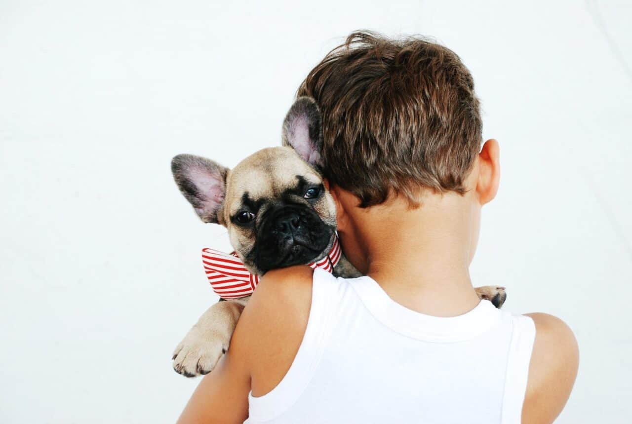 How to make sure your child and your new pet get along well