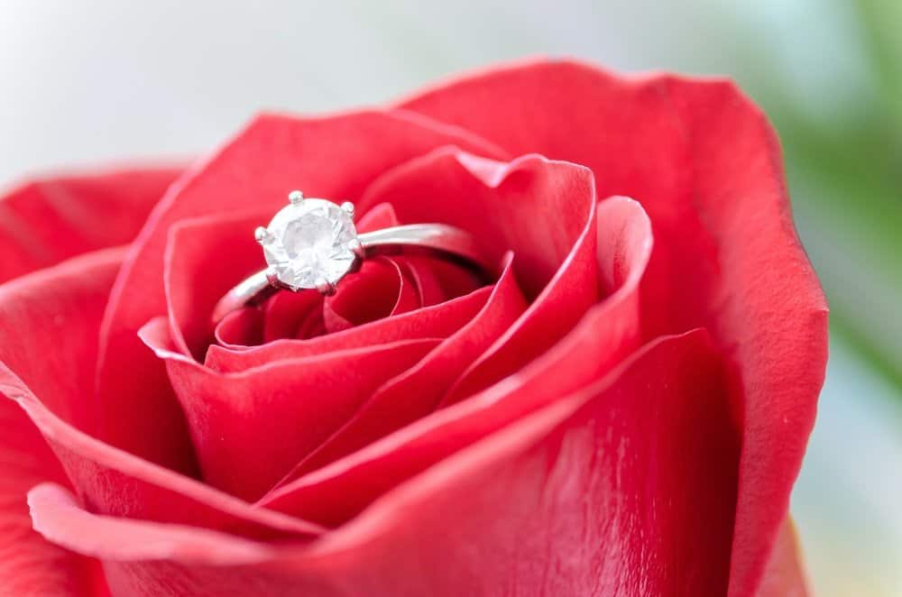 Proposing In Style (In More Ways Than One)