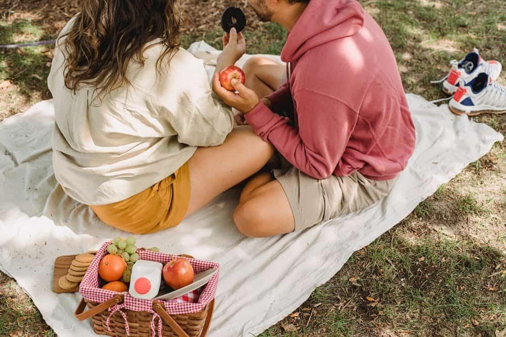 picnic in the garden / garden picnic