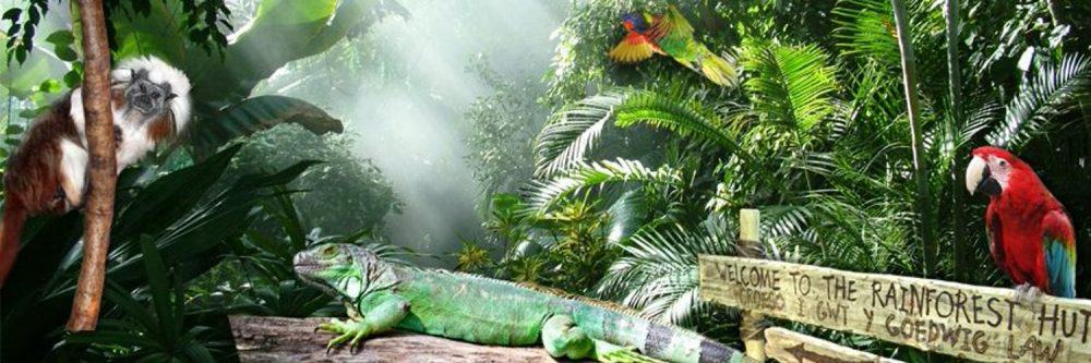 Plantasia - educational attractions in Wales
