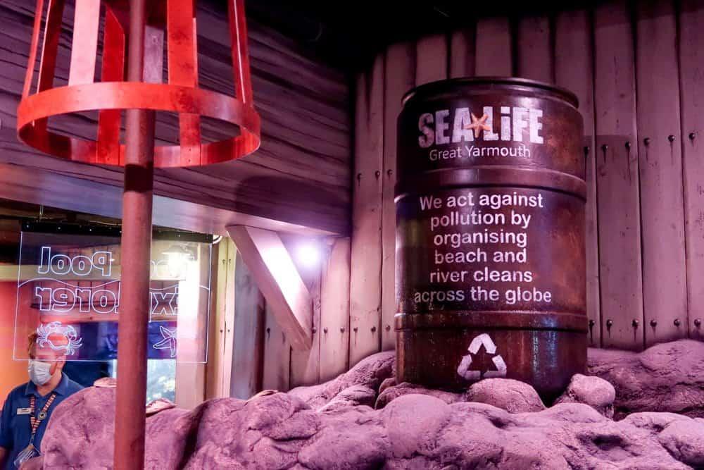 SEA LIFE Great Yarmouth RockPoolExplorer