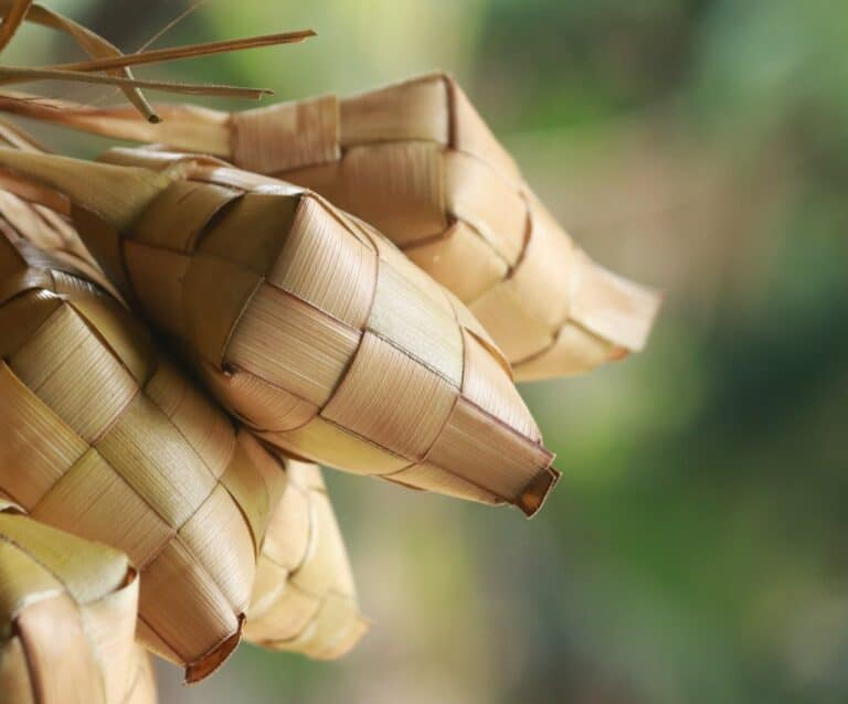 Bamboo: A Potential Answer to Privacy Concerns