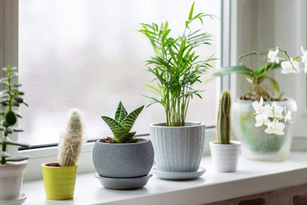 4 Ideas For Turning Your Home Into A Relaxation Haven